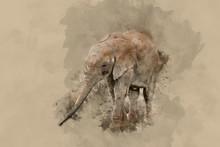 """Постер, картина, фотообои """"Beautiful watercolour painting of African Elephant Loxodonta Africana"""""""