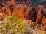 Bryce Canyon Sonnenaufgang mystischer Talblick