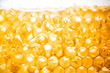 honey in honeycomb close-up background