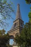 Fototapeta Wieża Eiffla - Tour Eiffel © L.Bouvier
