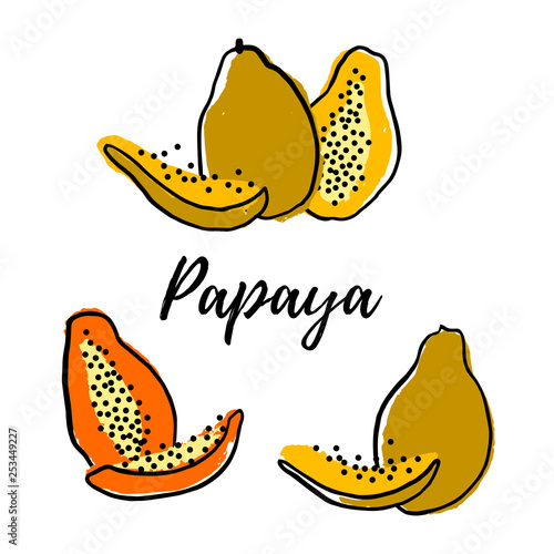 set of abstract papaya - 253449227