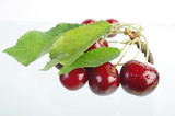 Sweet cherry fruits with leaves on a white background