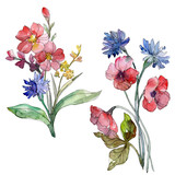 Wildflower bouquet floral botanical flowers. Watercolor background set. Isolated wildflowers illustration element.