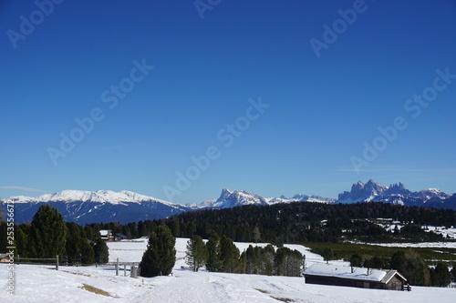 Panorama dall'Alpe di Villandro © Luciana