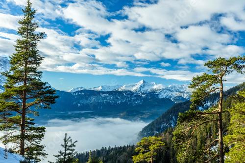 Alpenblick aus dem Bergwald