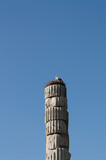 Storks nesting on a roman pillar in temple of Artemis one of the seven wonder of the ancient world - Selcuk, Turkey photo - 253615043