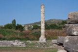 Temple of Artemis one of the seven wonder of the ancient world - Selcuk, Turkey . Storks nest in an old colony in the middle of a wasteland in the ancient city of Ephesus photo - 253615052