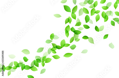 Leaf dancing image background material