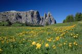Seiser Alm mit Schlern, Dolomiten, Südtirol, Italien, Europa