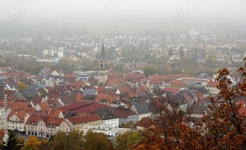 Die Ruine Honberg liegt auf der gleichnamigen Anhöhe inmitten der Stadt Tuttlingen, am Rande des Schwarzwalds und der Schwäbischen Alb.  - 253757046