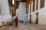 Punakha Dzong Monastery Punakha