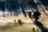 Fototapeta Na sufit - Panorama lungo il fiume Adda © scabrn