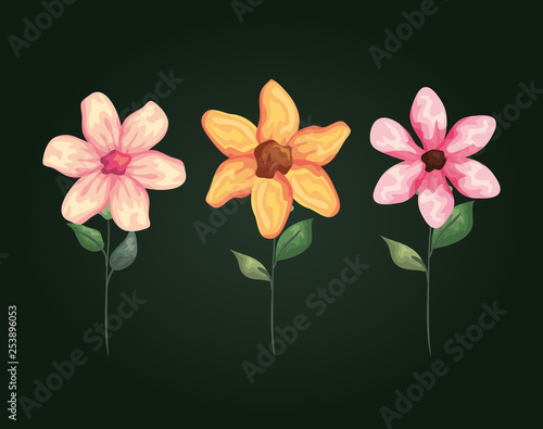 natural flowers with exotic petals and leaves