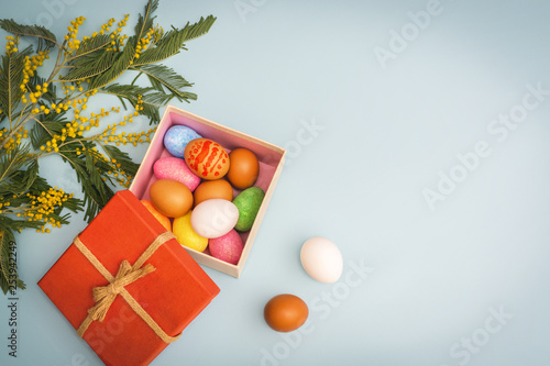 Easter eggs in a red gift box and mimosa on blue background