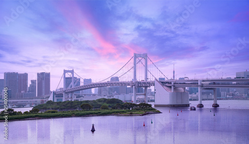 rainbow bridge and urban skyline at sunset, Tokyo, Japan - 254000045