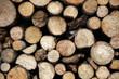 pile of wood closeup