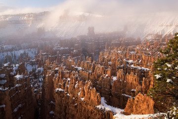Bryce Canyon in winter;  Bryce Canyon National Park;  Utah © Tom
