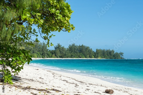 Fototapeten Strand A tropical beach with white sand, tropical vegetation, and clear water. Photo taken on Denis Island in the Seychelles.