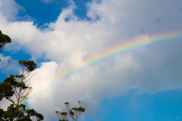 Magical rainbow on cloudy blue sky after summer rain