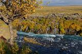 Herbst am Hraunafossar, Island