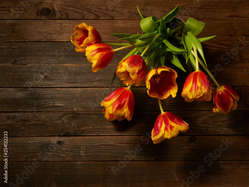 Bouquet of multicolored tulips.