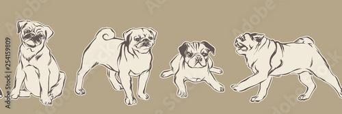 obraz PCV Hand drawn pug puppy dogs. Vector sketch seamless border, animal pets illustration