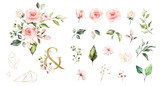 Set watercolor elements of roses collection garden  pink flowers, leaves, branches, Botanic  illustration isolated on white background.   ampersand - 254160608