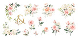 Set watercolor arrangements with roses. collection garden pink flowers, leaves, branches, Botanic  illustration isolated on white background.   ampersand - 254161048