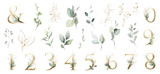Set watercolor herbal elements. collection garden leaves, branches, Botanic  illustration isolated on white background.  numbers, ampersand - 254161281