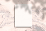 scene, stationery mock up for social media  with shadow. Background with sunlight - 254208282