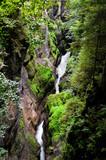 Fast water stream in mountain river in the forest. The river flows in a narrow canyon, washed with water in the mountain. A thin streams descends from the mountains and flows into the river.