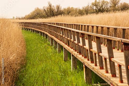 Puente de madera. - 254211019