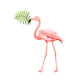Beautiful tropical image with pink flamingo and plumeria flowers on a white backdrop. Exotic tropical palm tree. Flamingo background and jungle leaf in his beak. The Natural background.