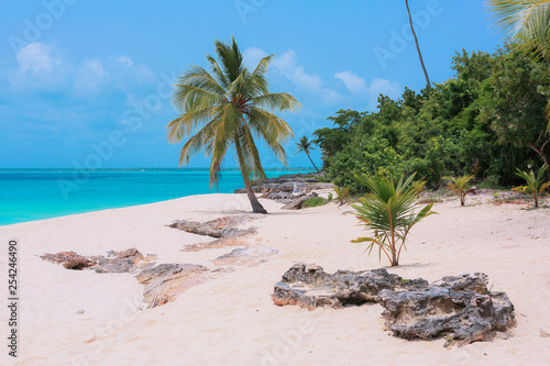 Luxury Beaches of the Paradise Island, Dominicana