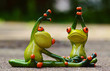 frogs playing gymnastics