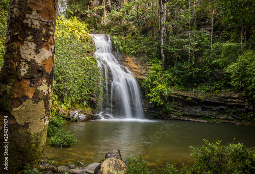 waterfall in forest - 254279074
