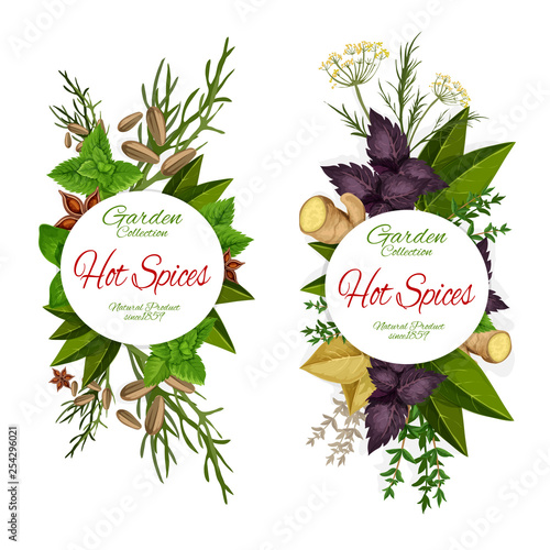 Seasoning of herbs and spices icons, grocery store