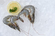 Fresh raw shrimps prawns and lemon on ice background in the seafood supermarket