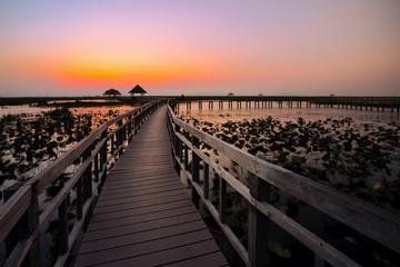 wood bridge in lake water lily © Witthaya