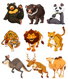 Set of wild animal character