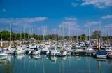 Ile d'Oléron, Charente-Maritime.