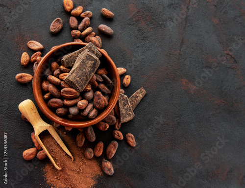 Cocoa beans and powder - 254346087