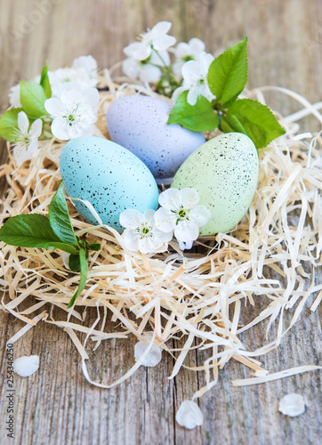 Nest with easter eggs - 254346250