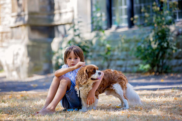 Beaugtiful preschool children, playing with sweet dog in the park © Tomsickova