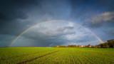 Fototapeta Tęcza - Regenbogen während Sturm Eberhard in Deutschland über einem Feld © kentauros