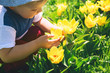 Child with tulips flowers outdoors at springtime