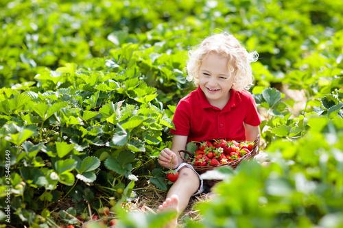 Leinwanddruck Bild Kids pick strawberry on berry field in summer