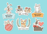 Hand drawn stickers of cats and dogs with quotes. Pet lovers concept. Print objetcs, perfect for T-shirt, pet shop, decor elements and design products for pets.