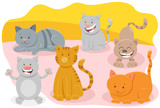 cute cats or kittens animal characters