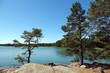 Leinwanddruck Bild - Naturreservat Ragö bei Stockholm, Schweden
